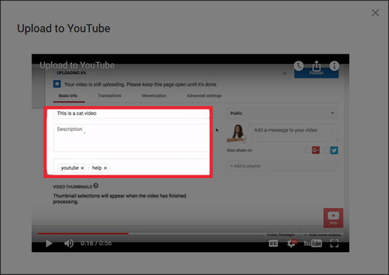 YouTube video metadata shown in the Basic info tab
