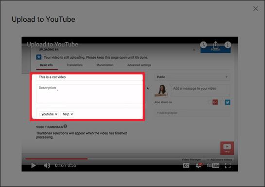 YouTube video metadata shown in the Basic info tab