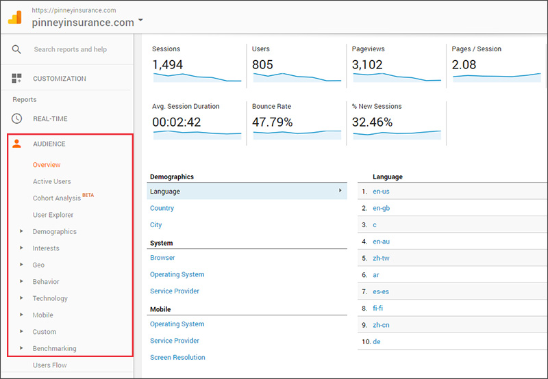 Google Analytics audience statistics