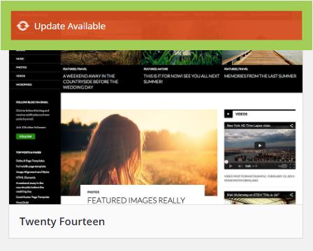 WordPress theme update notification